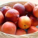 Fruit of the Spirit: Peace Peach