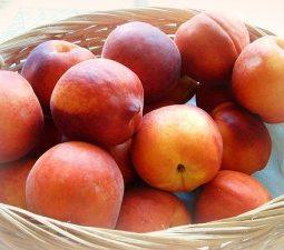 rp_fruit-of-the-spirit-peach-300x225.jpg