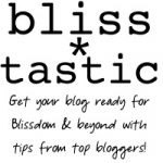 Bliss*Tastic: Week 4: Amy From the Finer Things In Life: Building Your Blog Readership