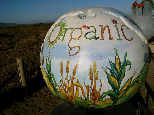 """Organic-Sustainable Farmed Products"" by Vicky Tesmer (Cool Globes)"