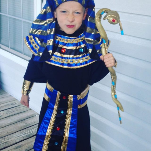 The Pharaoh is ready for Ancient Egyptian Day at school!hellip