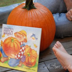 The Pumpkin Patch Parable by Liz Curtis Higgs // Perfect family time for Halloween & Fall!