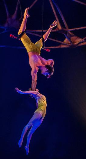 cirque totem trapeze