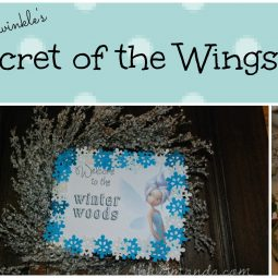 Tinkerbell & Periwinkle Secret of the Wings Party