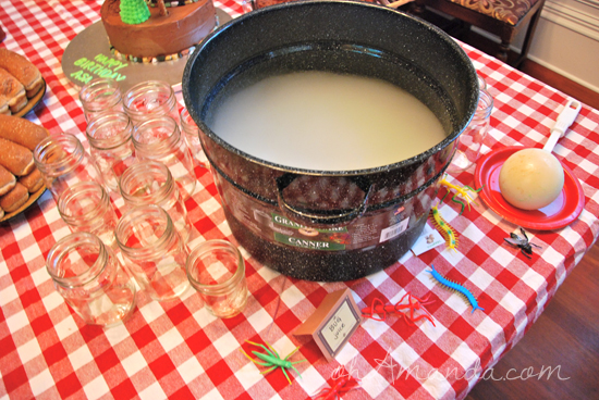 Camping Birthday Party Dry Ice Bug Juice Punch