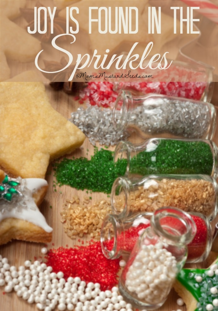Joy is found in the sprinkles // Christmas wisdom from Rebecca at MomsMustardSeeds.com