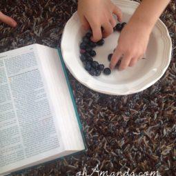 blueberries summer family devotion