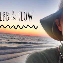 bloggy ebb & flow // ohAmanda.com