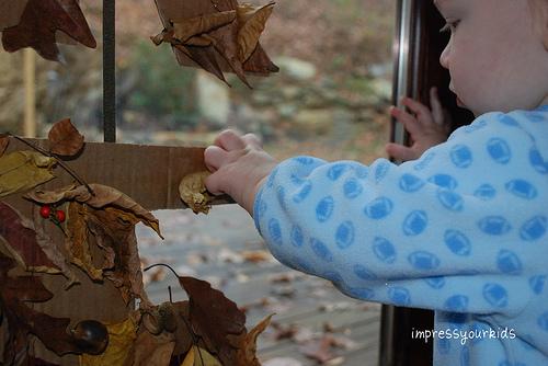 leaf fall decoration kids