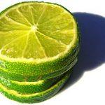 Goodness: Fruit of the Spirit: Lime Sun Catchers