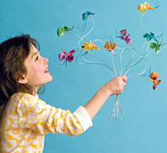family fun butterfly craft