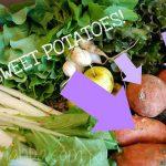 YUMMY Garlic Sweet Potato Fries