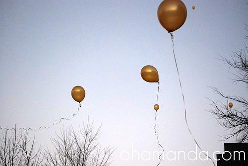 tangled party lantern rapunzel