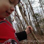 Walking Sticks & Following the Shepherd