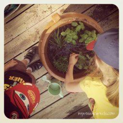 rp_gardeners-1024x1024.jpg