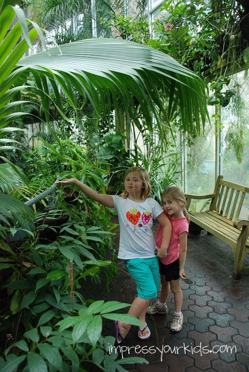 indoor tropical garden