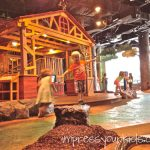 Our Summer: Fernbank Museum of Natural History