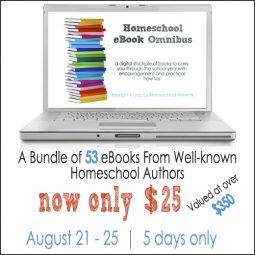 omnibus-laptop-500