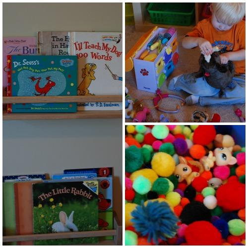 Pet School Ideas for Preschool Homeschool