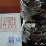 Monthly Mission Celebration {Nickels for Nets}