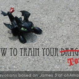Dragon Week at ohAmanda.com // Fun Bible activities and devotions based on James 3 and How To Train Your Dragon 2