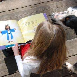 New Easter Resurrection Books for Kids 1