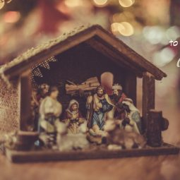 not-too-late-to-celebrate-advent